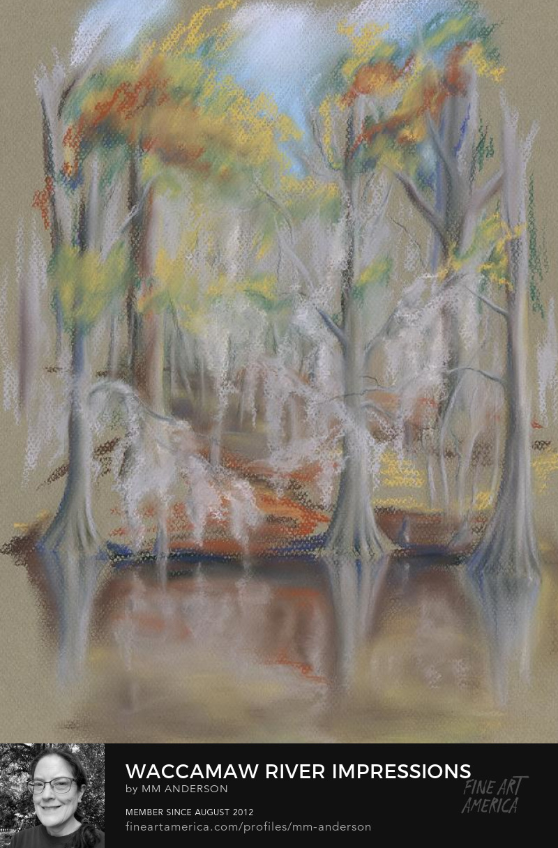 Waccamaw River Impressions pastel artwork for sale by MM Anderson