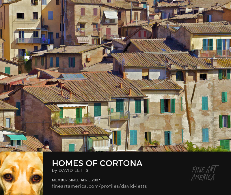 Houses of Cortona Italy of Tuscany photograph for sale by David Letts