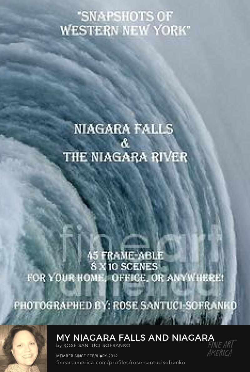 My Niagara Falls And Niagara River Book