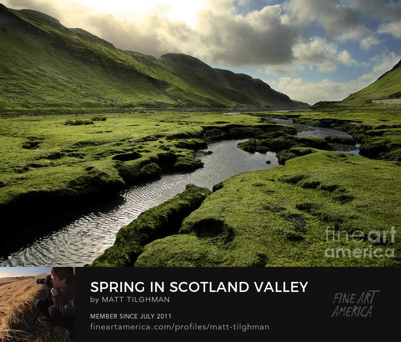 Spring in the Scottish Highlands Art Print