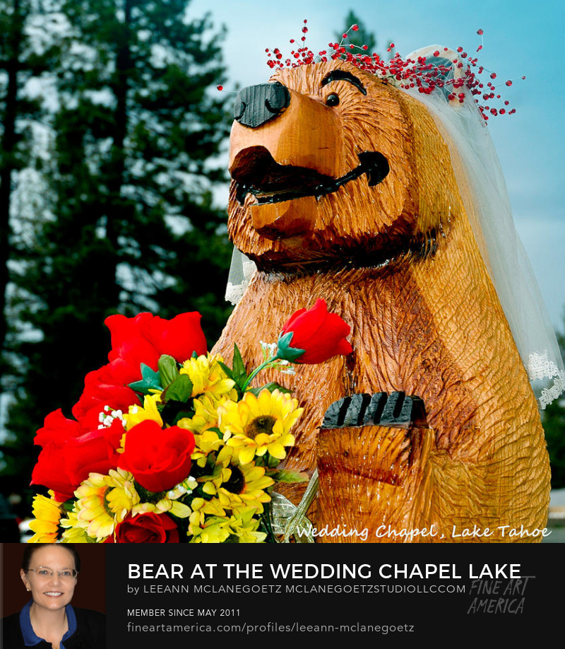 McLaneGoetzStudioLLC.com Bear at Wedding Chapel Lake Tahoe California