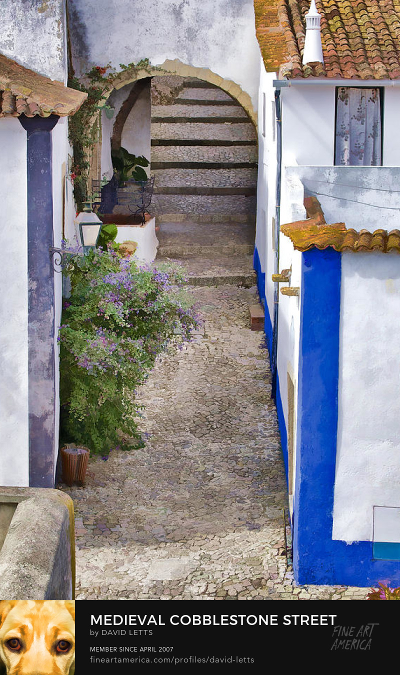 Medieval Cobblestone Street Obidos Portugal photograph for sale by David Letts