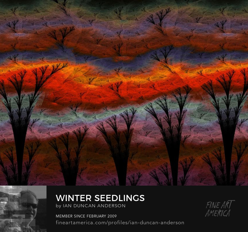 buy print of 'Winter seedlings' at Fine Art America