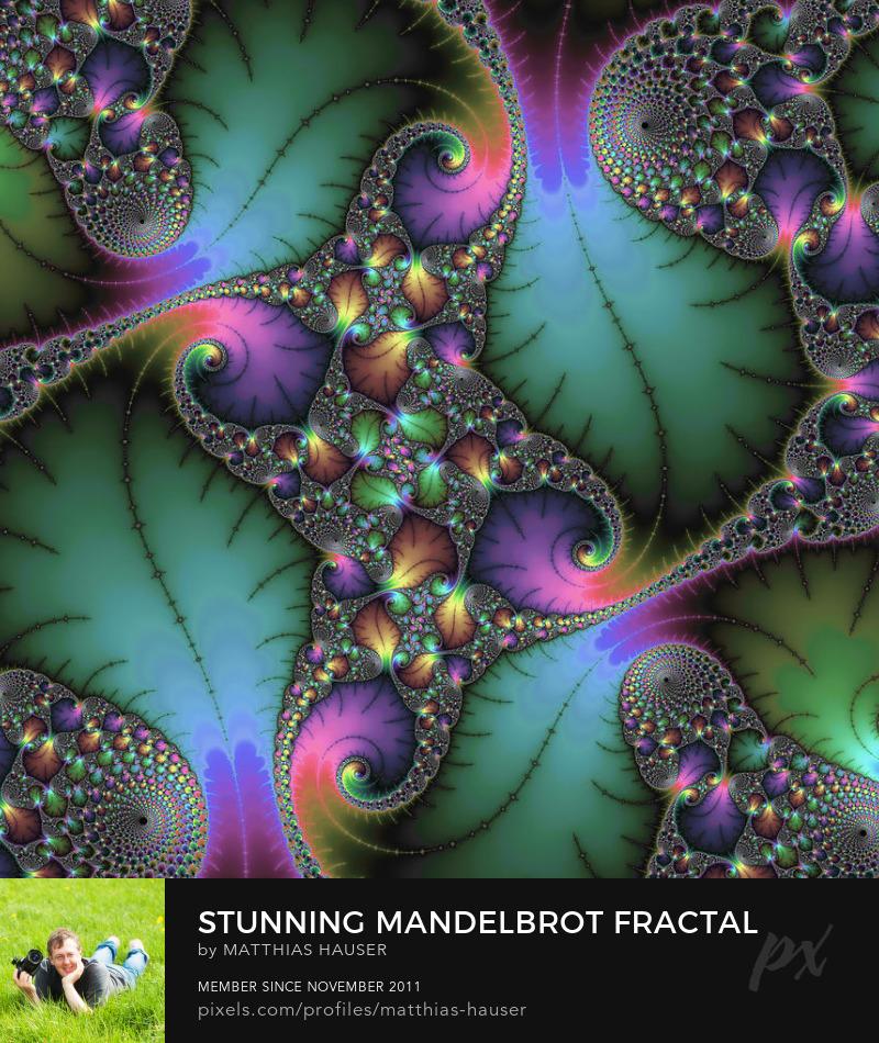 Fractal Art Jewel Colors by Matthias Hauser
