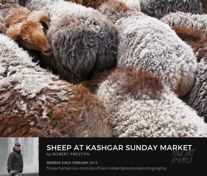 Sheep at Kashgar Sunday Market