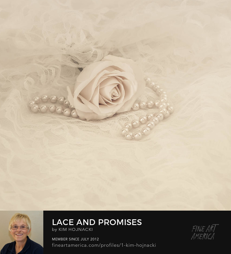 Lace and Promises by Kim Hojnacki
