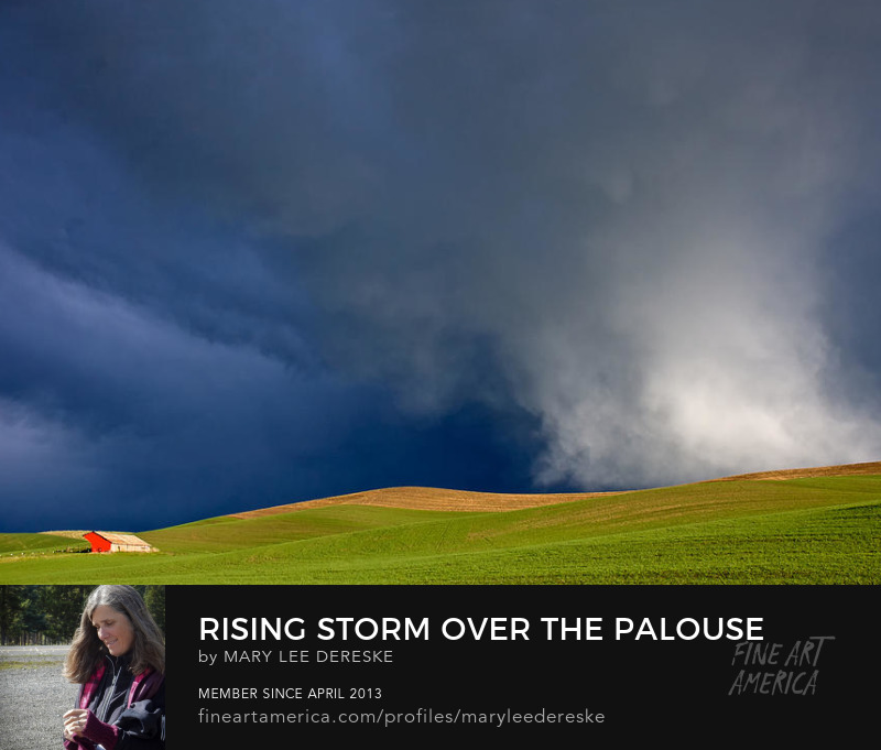 Rising Storm Over the Palouse by Mary Lee Dereske