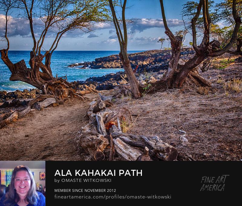 Ala Kahakai Path Hawaii Photography Prints