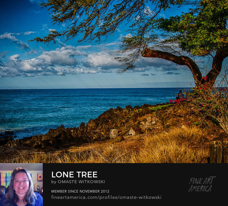 Lone Tree Hawaii Photography Prints