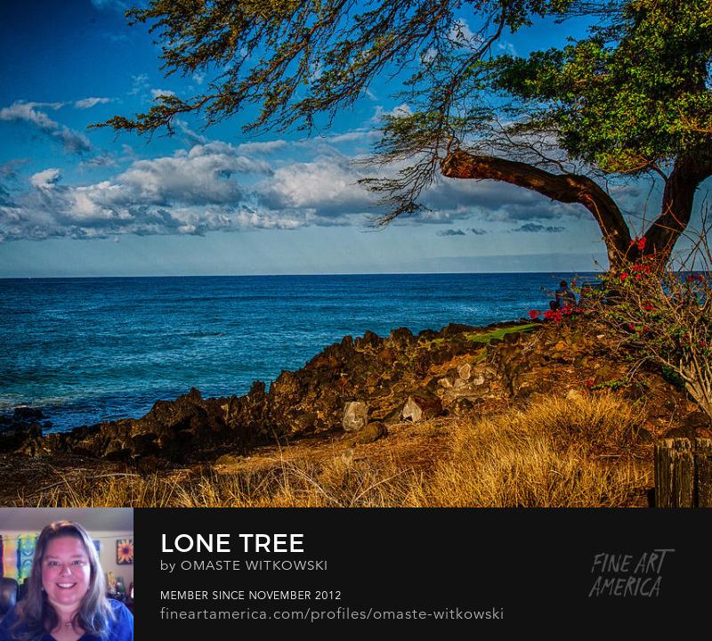 Lone Tree Hawaii Photography Prints