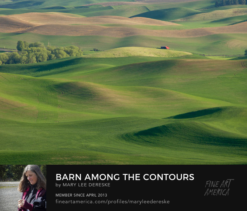 barn-among-the-contours-mary-lee-dereske