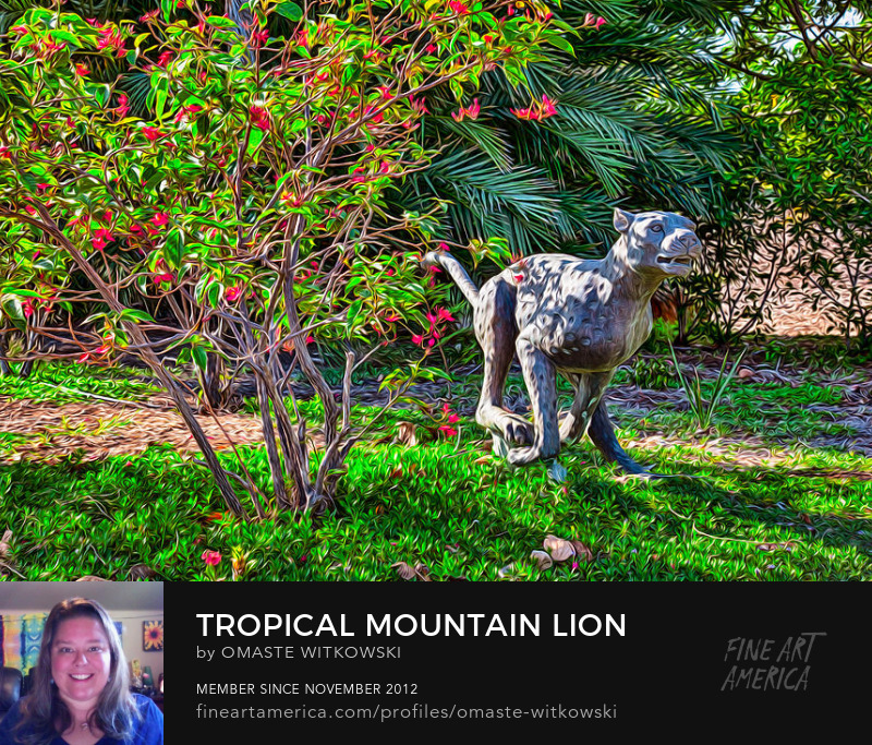 Tropical Mountain Lion Hawaii Photography Prints