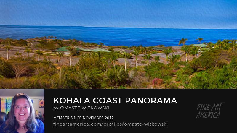 Kohala Coast Panorama