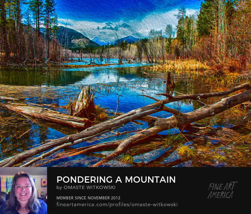 Pondering A Mountain Landscape Photography
