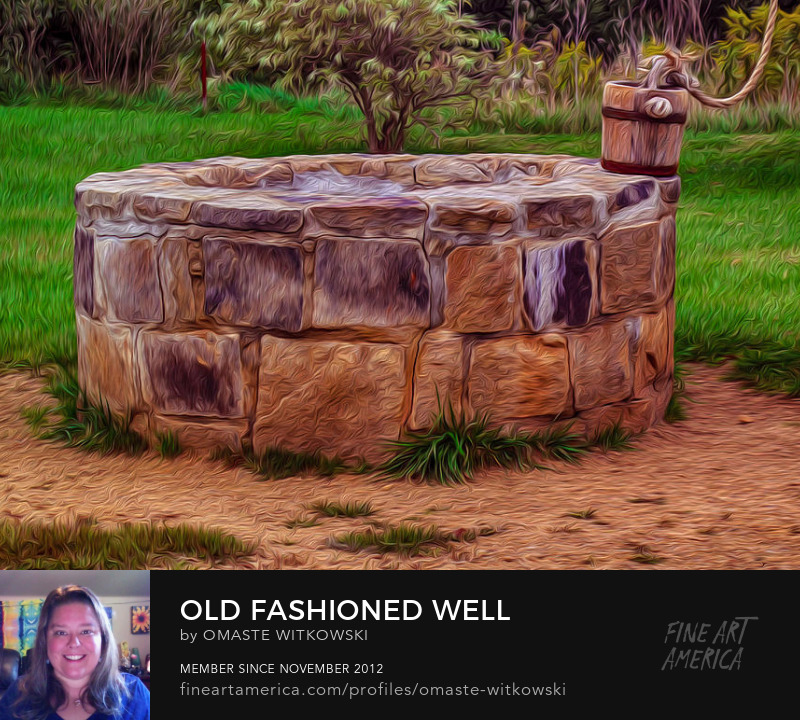 Old Fashioned Well Antique Collections by Omaste Witkowski