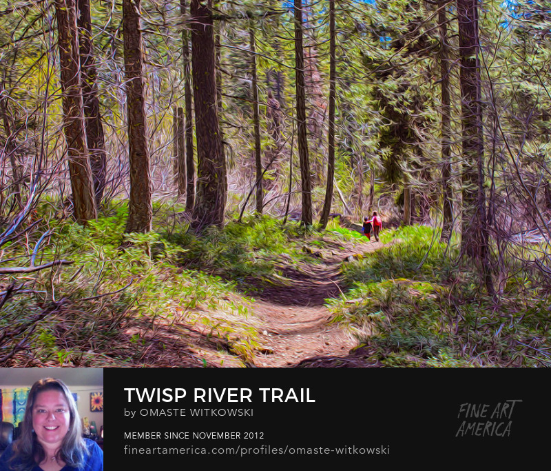 Twisp River Trail Methow Valley Trails