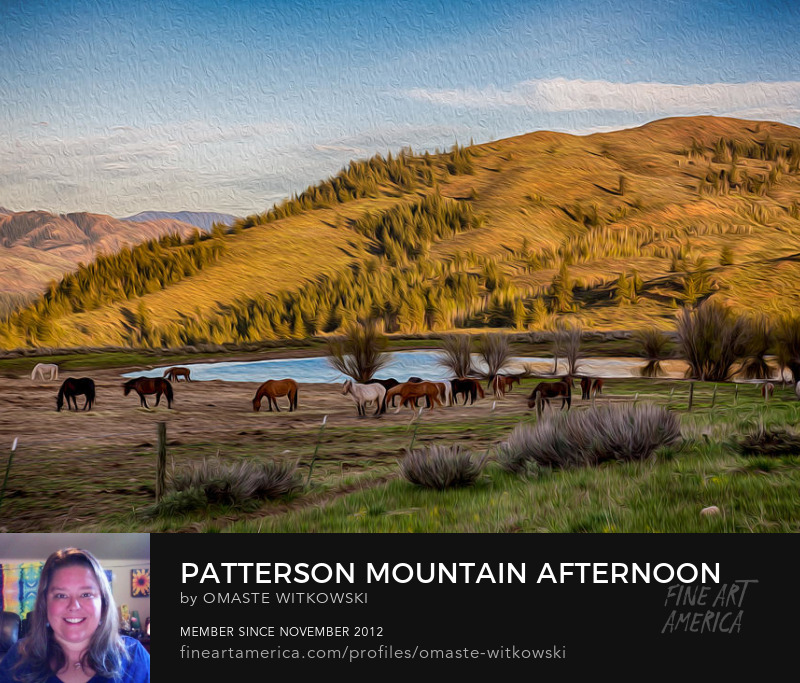 Patterson Mountain Afternoon View Methow Valley