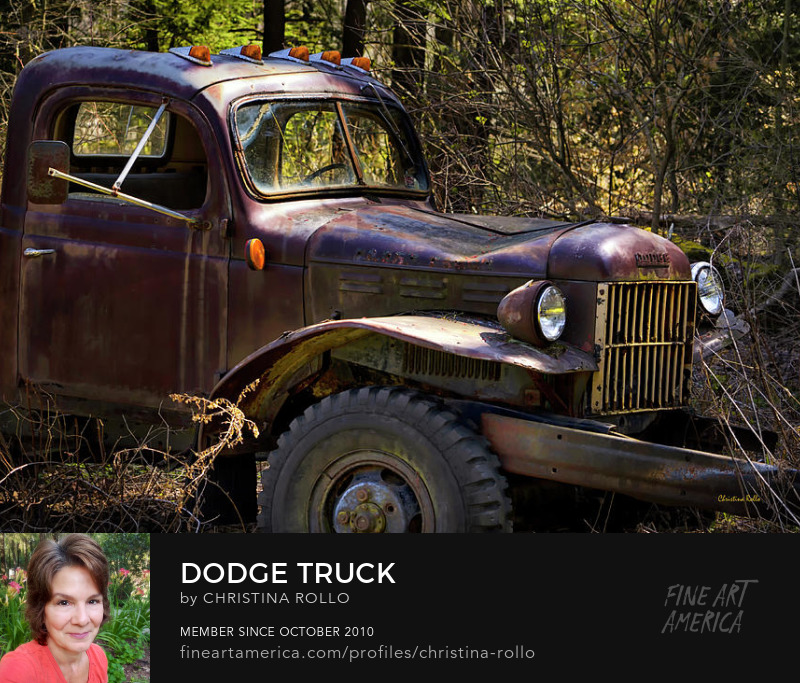 Rustic Antique Dodge Truck
