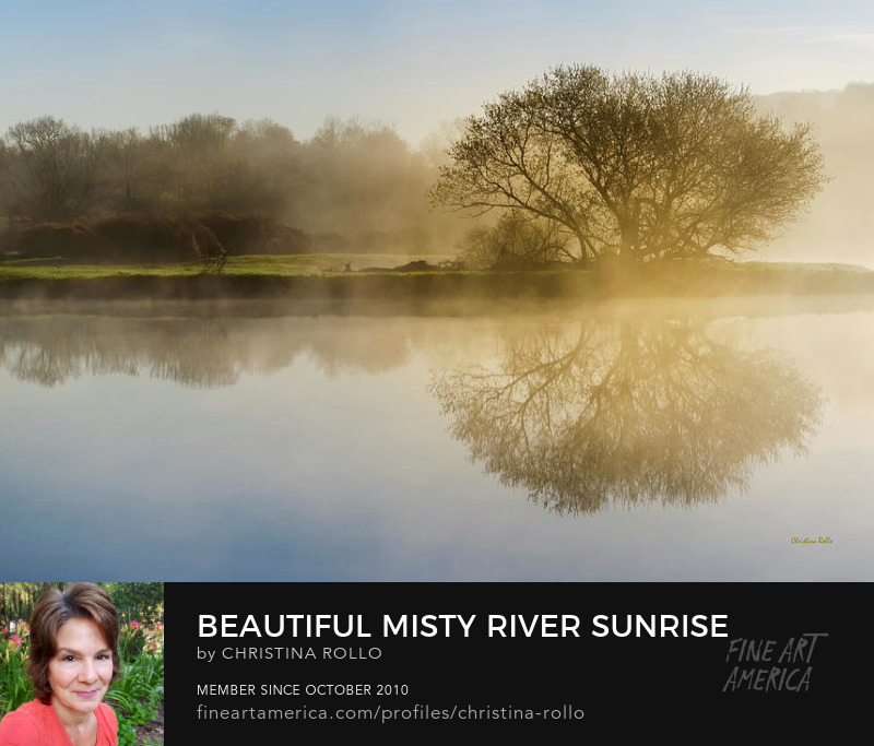 Beautiful Misty River Sunrise