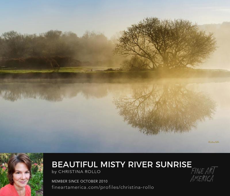 Beautiful Misty River Sunrise
