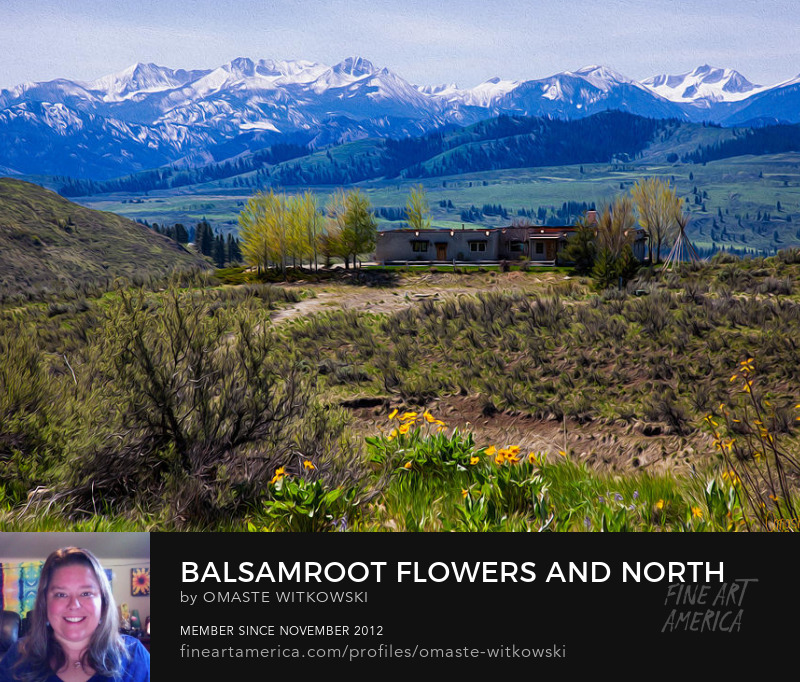 Balsamroot Flowers And North Cascade Mountains Architectural Fine Art Photography Art Prints