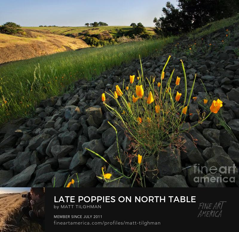 North Table Mountain California Art Online