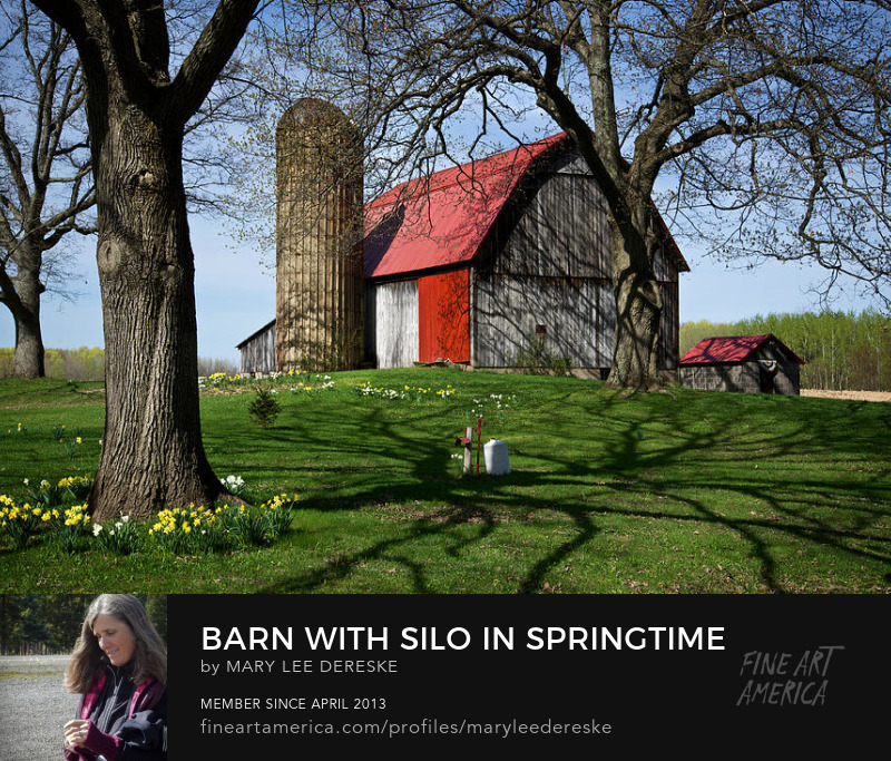 barn-with-silo-in-springtime-mary-lee-dereske