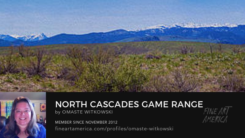 North Cascades Game Range Panorama