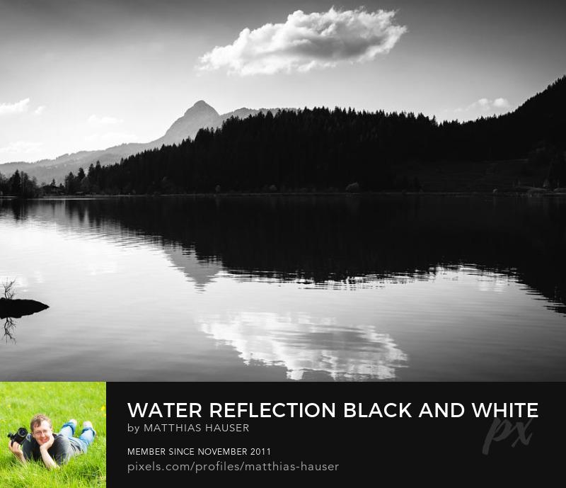 Black and White Landscape Art Prints