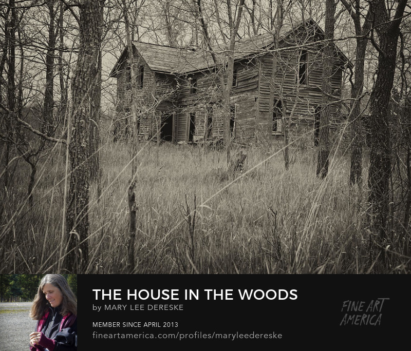 the-house-in-the-woods-mary-lee-dereske