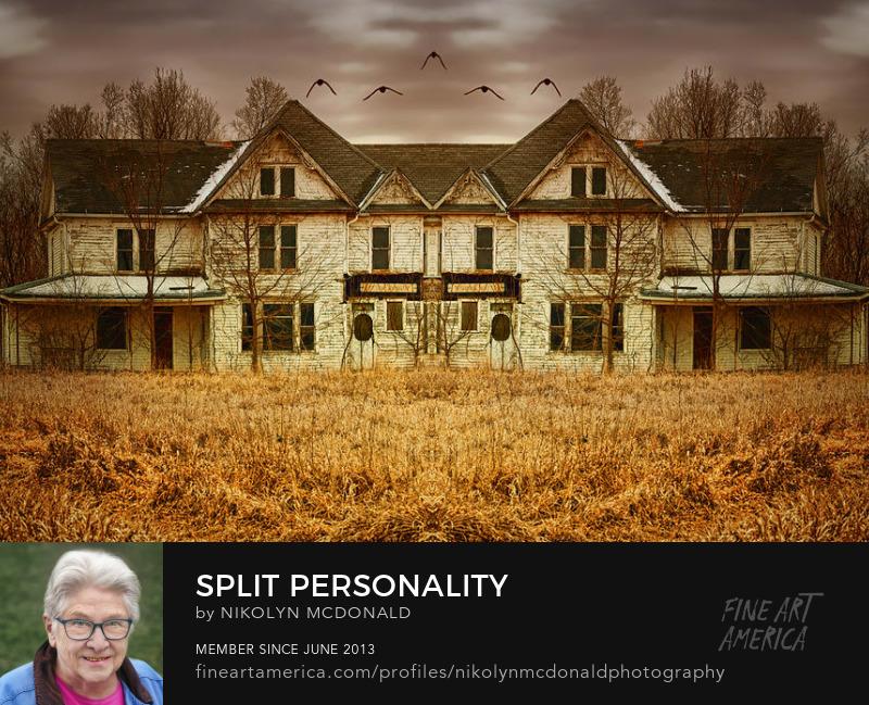 old abandoned symmetrical house birds Gothic feel by Nikolyn McDonald