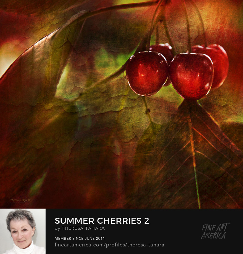 Theresa Leigh Photography Summer Cherries