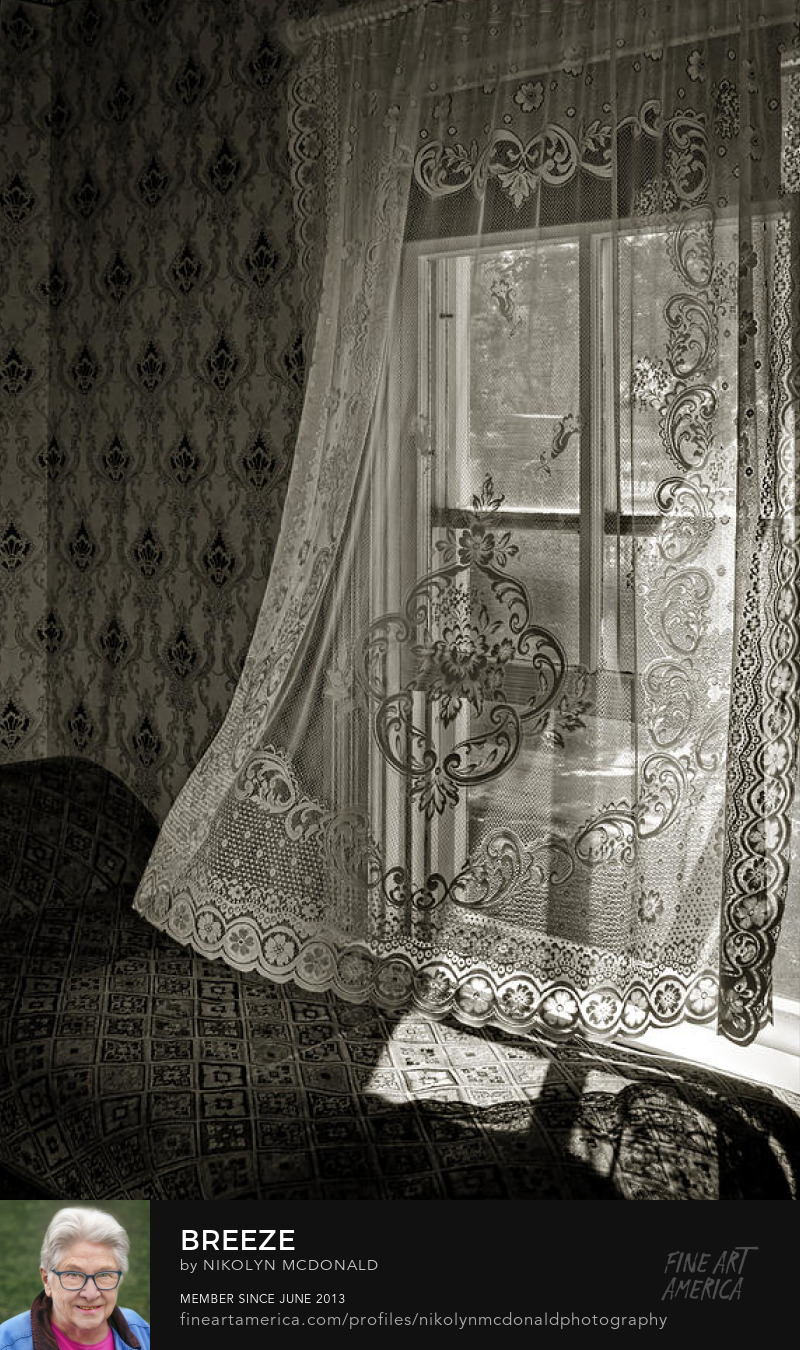 vintage settee by window with blowing lace curtain Nikolyn McDonald