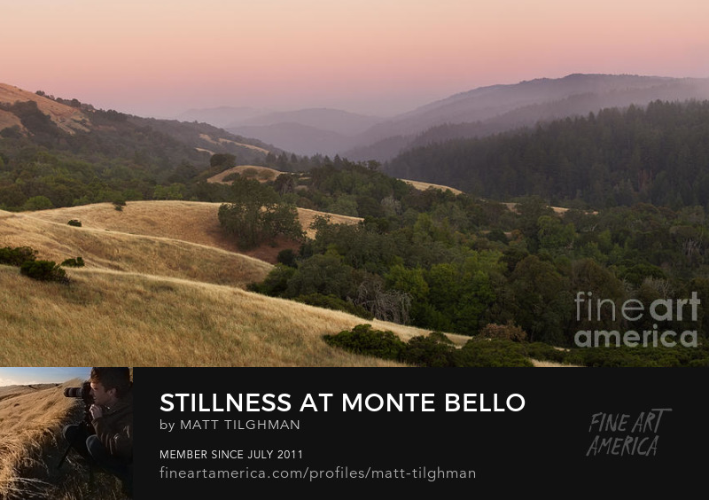 Monte Bello Open Space Sunset Art Online