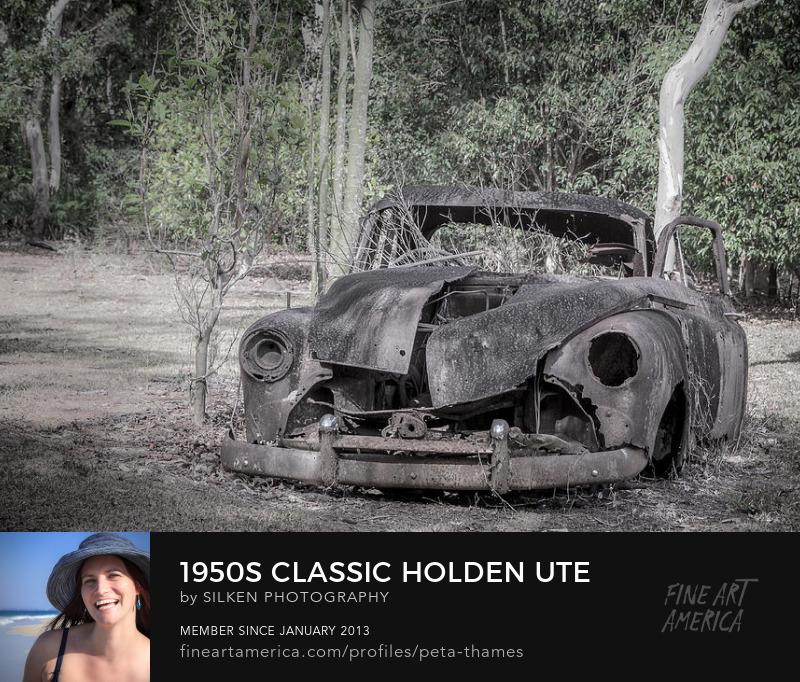 1950s FJ Holden by Peta Thames