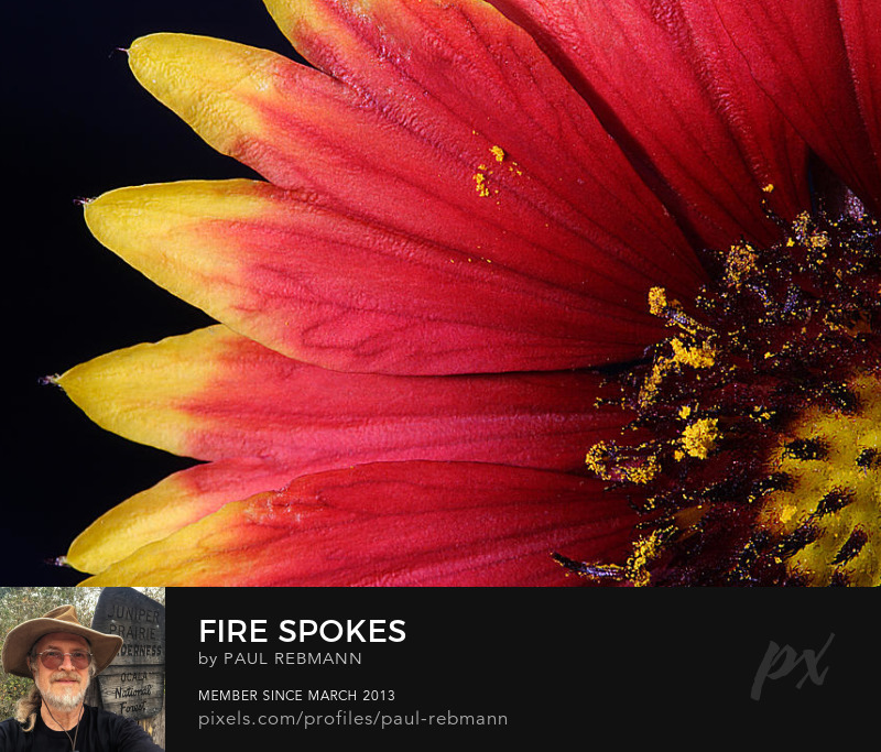 View online purchase options for Fire Spokes by Paul Rebmann