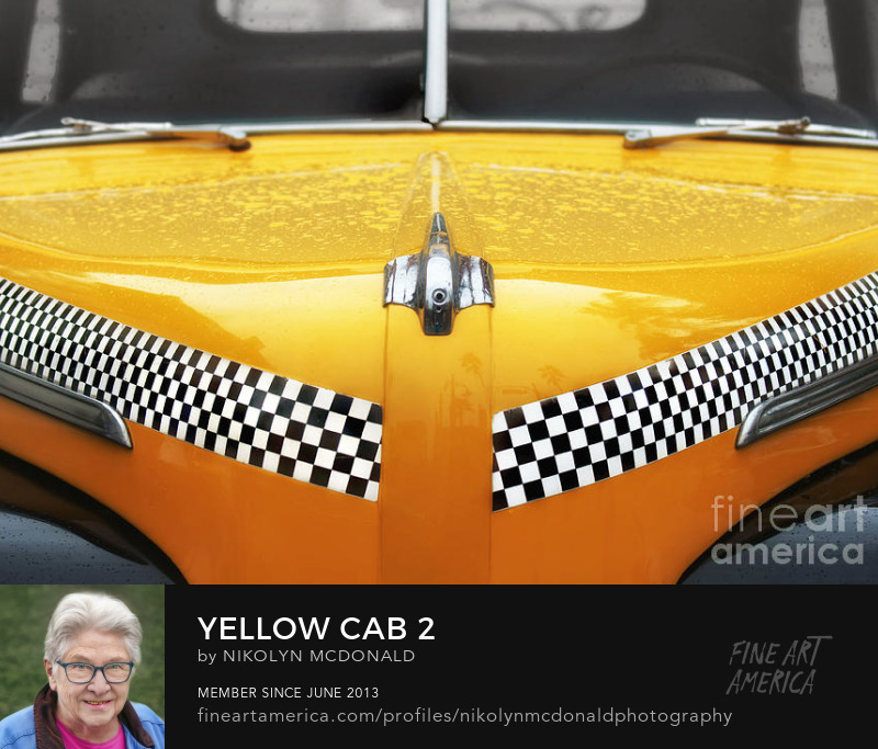 yellow checkered taxi cab close-up photo by Nikolyn McDonald