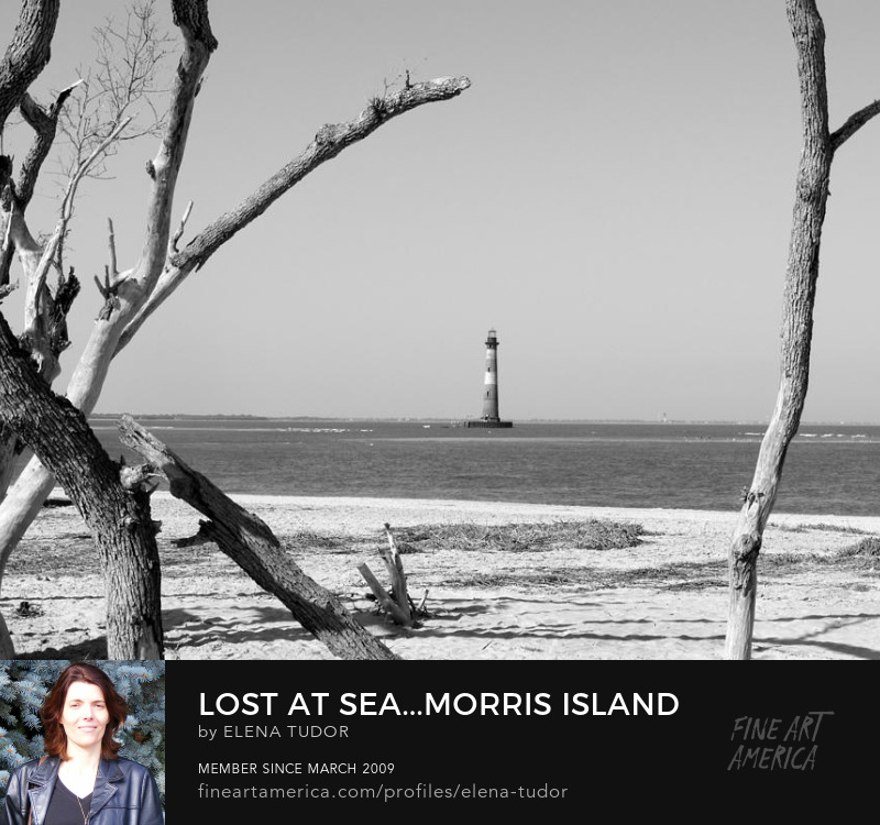 Historic Morris Island Lighthouse art print