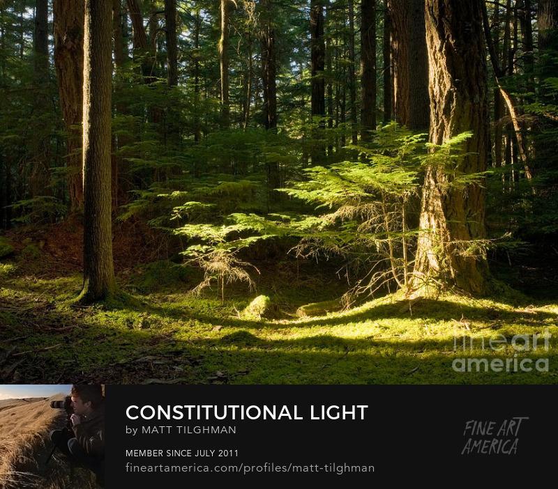 Mount Constitution Washington Photography Prints