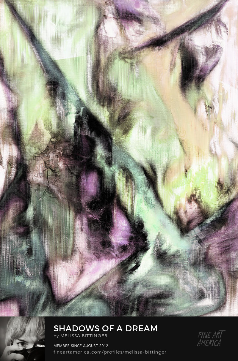 dream shadows digital art by melissa bittinger