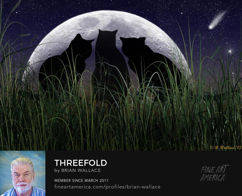 Threefold by Brian Wallace