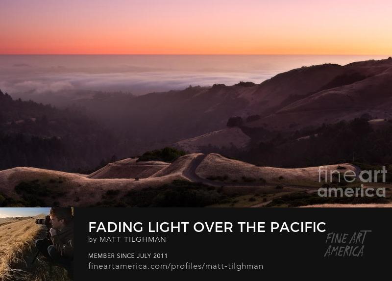 Pacific Ocean Fog Art Prints