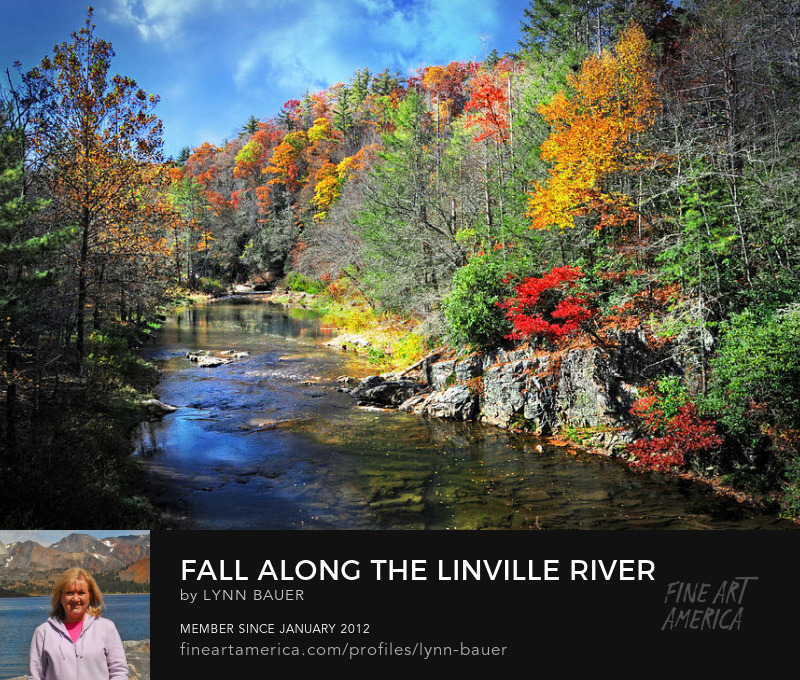 Linville River Fall Color North Carolina by Lynn Bauer