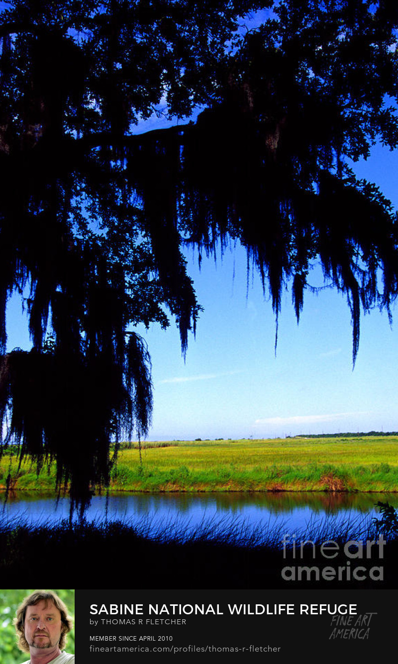 Photography Prints Sabine National Wildlife Refuge
