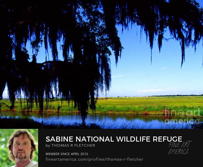 Photography Prints Sabine National Wildlife Refuge