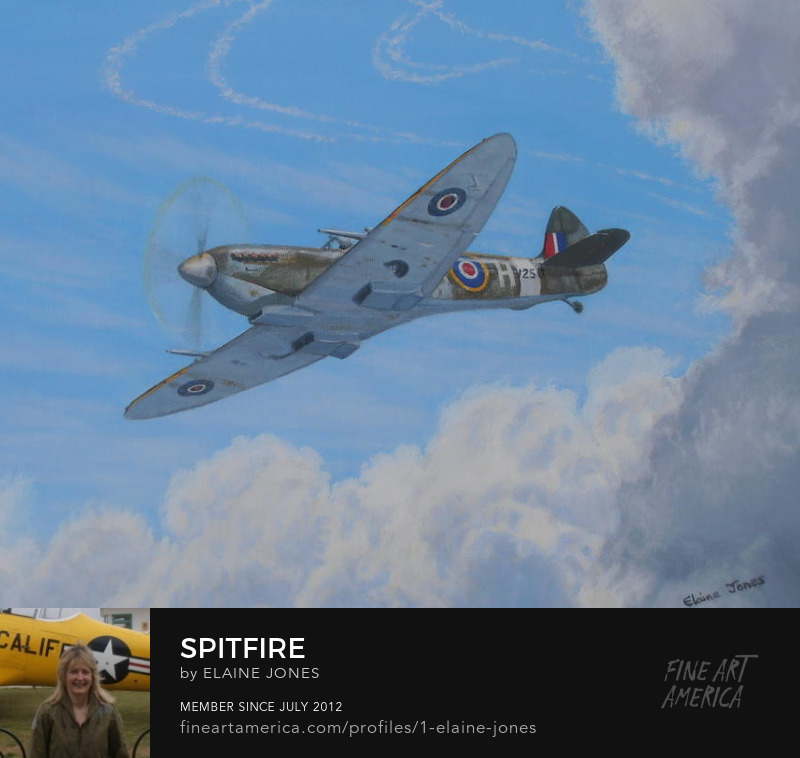 Spitfire oil painting by Elaine Jones