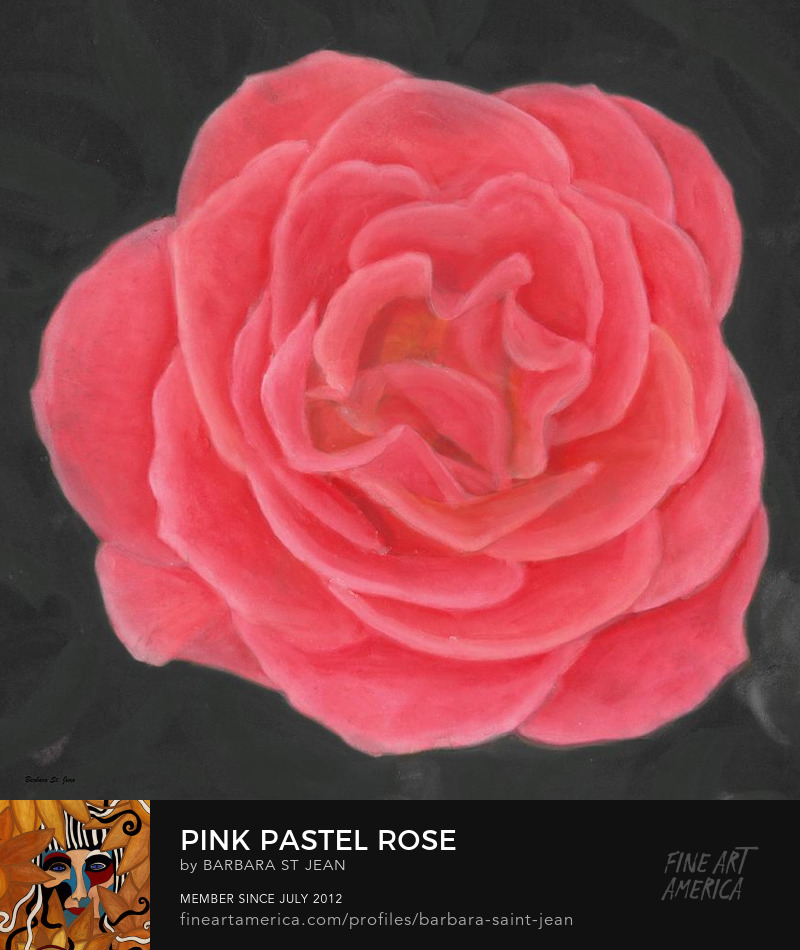 Pink Pastel Rose by Barbara St. Jean