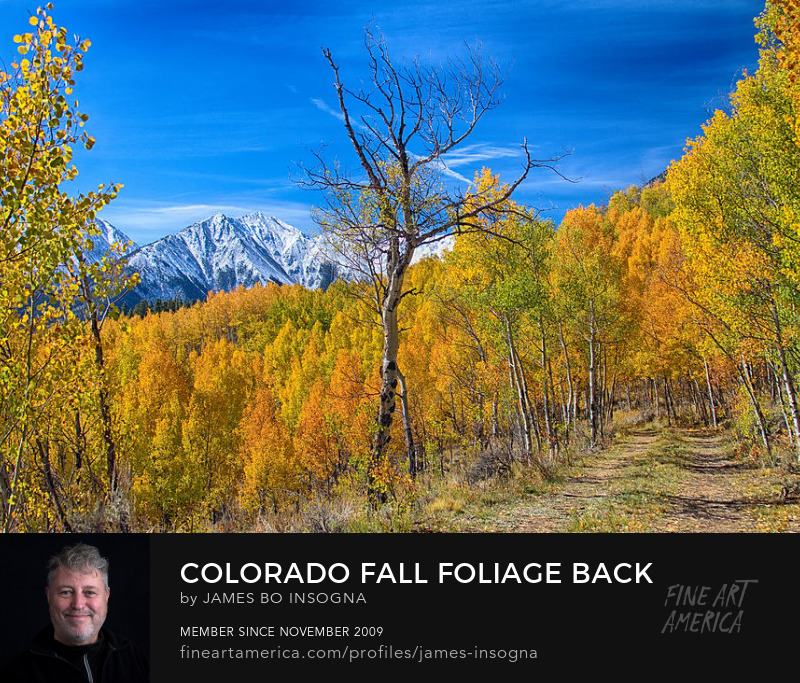 Colorado Autumn Back Country View Art Prints