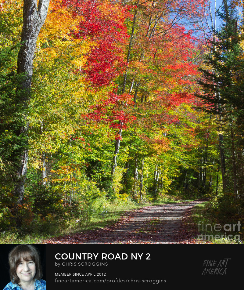 adirondack country road photo by chris scroggins