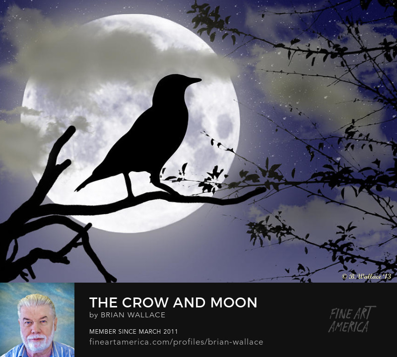 The Crow And Moon by Brian Wallace